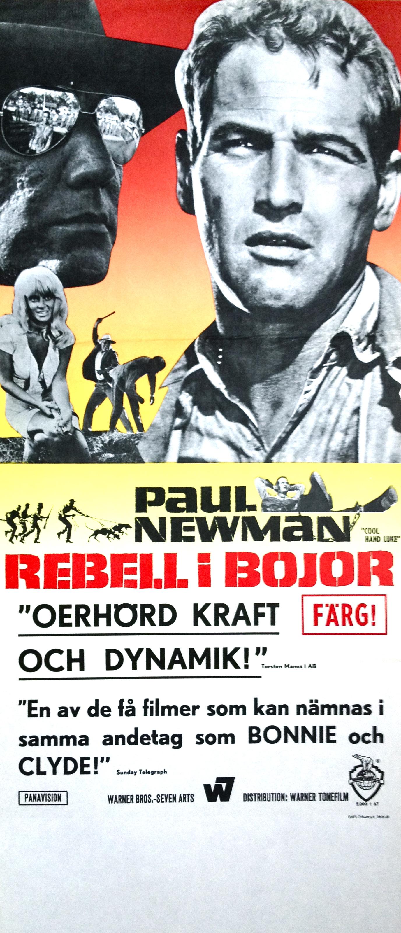 Movie poster cool hand luke