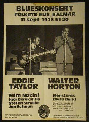 Blueskonsert - Folkets hus Kalmar 1976